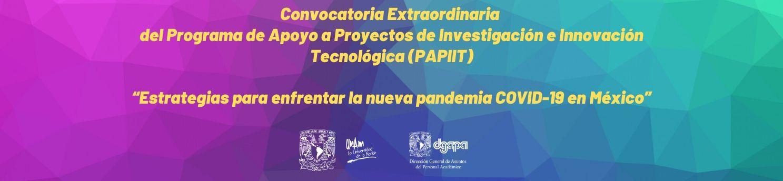 Convocatoria Extraordinaria del Programa de Apoyo a Proyectos de Investigación e Innovación Tecnológica (PAPIIT)